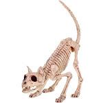 Seasons Skeleton Kitty Bonez Halloween Decoration