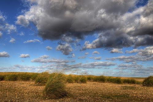 The wind / El viento