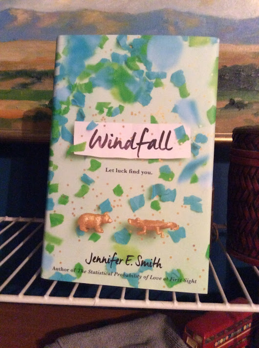 This Chick Read: Windfall by Jennifer E. Smith