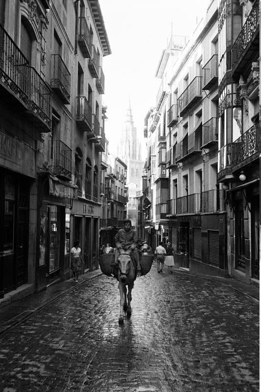 Burro en la Calle Ancha de Toledo en septiembre de 1962. Fotografía de Harry Weber. Österreichische Nationalbibliothek