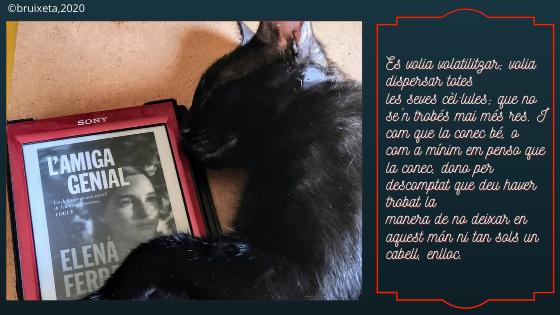 L'Amiga Genial, Elelena Ferrante