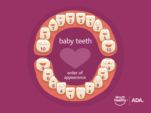 How to Take Care of Your Baby's Teeth - American Dental Association