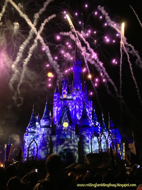 Mickey's Very Merry Christmas Party 2013