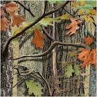 Hunting Camo Lunch Napkins (18)