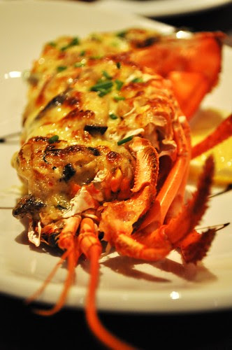 cheese lobster