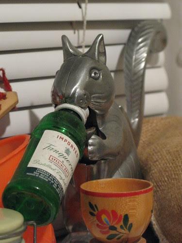 bar squirrel
