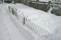 shoveled garden path