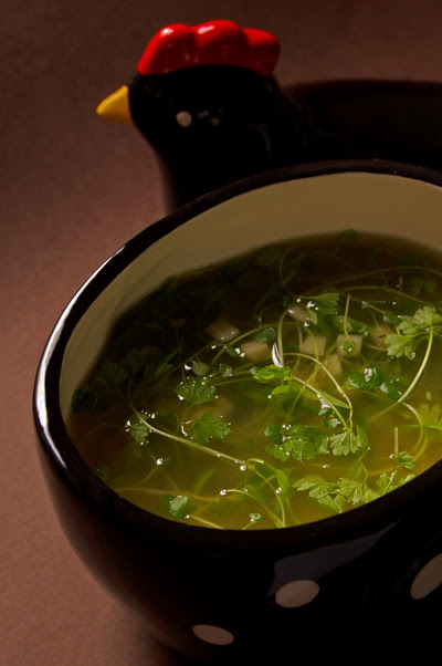 Quadratini and Micro herb Soup