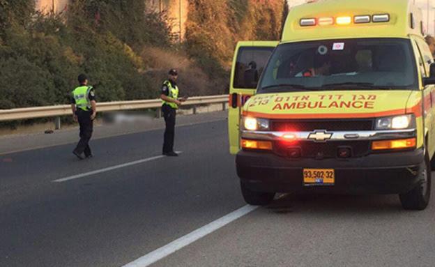 זירת התאונה הקטלנית, הבוקר (צילום: דוברות מד