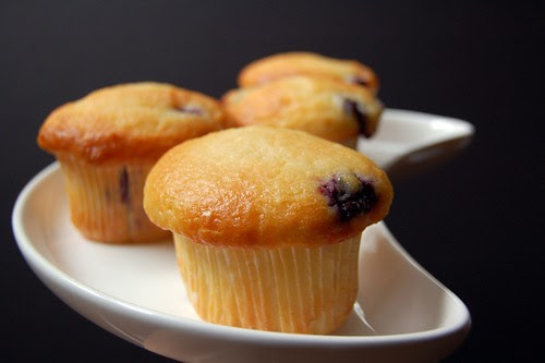 blueberry yoghurt muffins with lemon syrup© by haalo