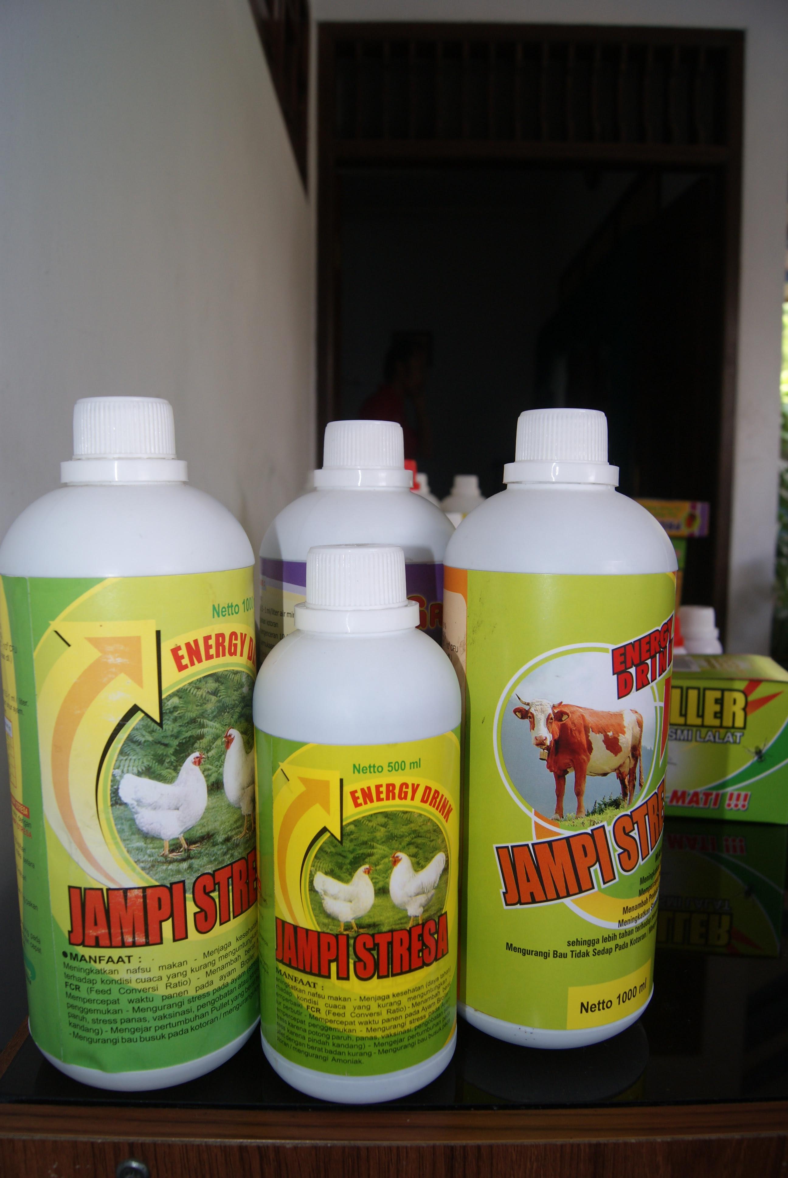 cara ternak kambing jual obat ternak