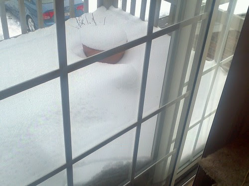 a foot of snow on march 25