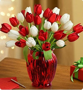 Holiday Tulips  Shop Now
