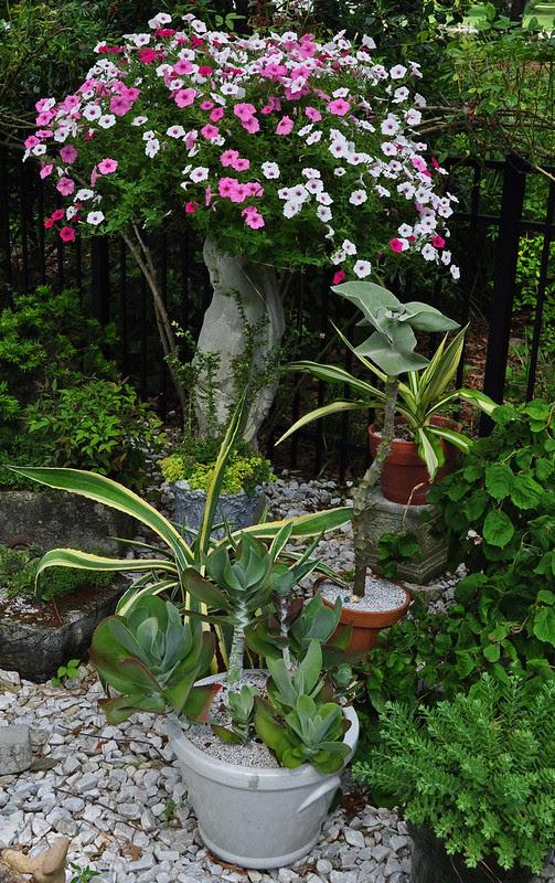 Eure Garden (20)