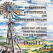 Bluebonnets, Firewheels, and Brown-Eyed Susans or Poems New and Used From the Bandera Rag and Bone Shop - David Lee (Wings Press)