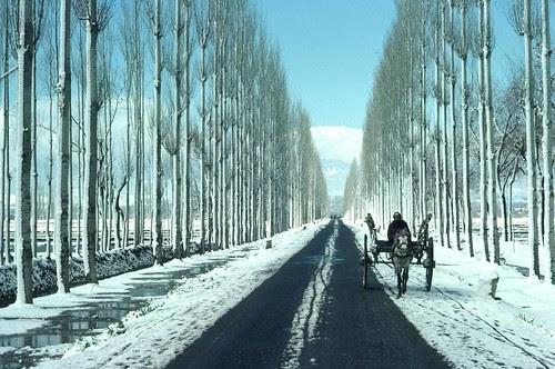 लो चुटकियों में कश्मीर मुद्दे का हल...खुशदीप