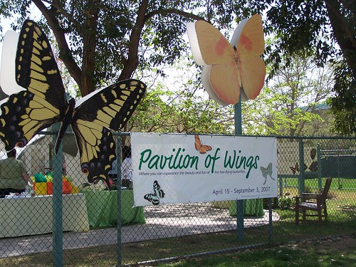 Pavilion of Wings