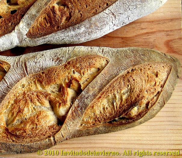 Basic Dan Lepard's bread