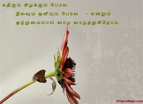 Wedding Anniversary Wishes To Friend In Tamil
