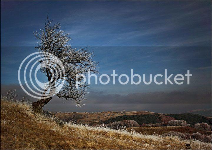 photo Evgeni-Donev-1_zpsc3d6df80.jpg