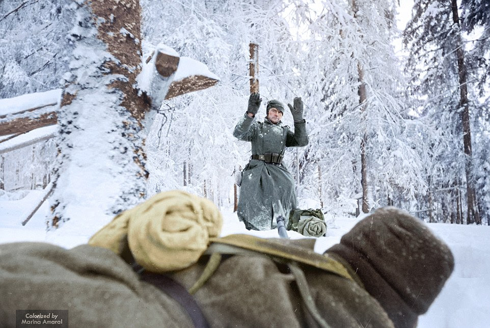 Hands up: A German soldier is pictured being captured by a Soviet soldier during the Battle of Moscow, on December 1, 1941