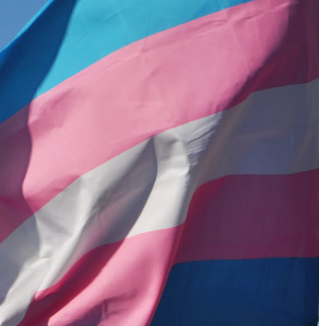 European court: Forced sterilization of trans people violates human rights