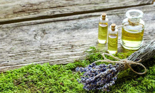Which Organic Face Oils Are the Best | You Can Glow