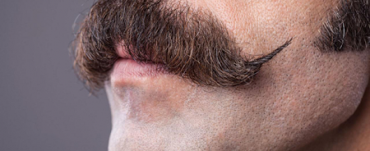 Different Mustache Styles And Grooming | 4Ever Fitness