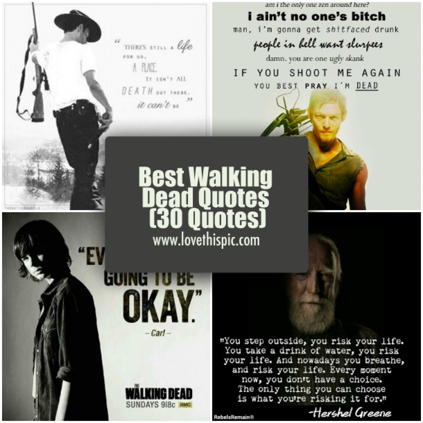 Best Walking Dead Quotes 30 Quotes