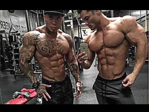 THE BEST AESTHETIC PHYSIQUES OF 2017 EDITORS CHOICE