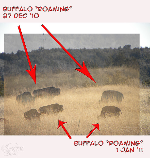 BuffaloThenNow