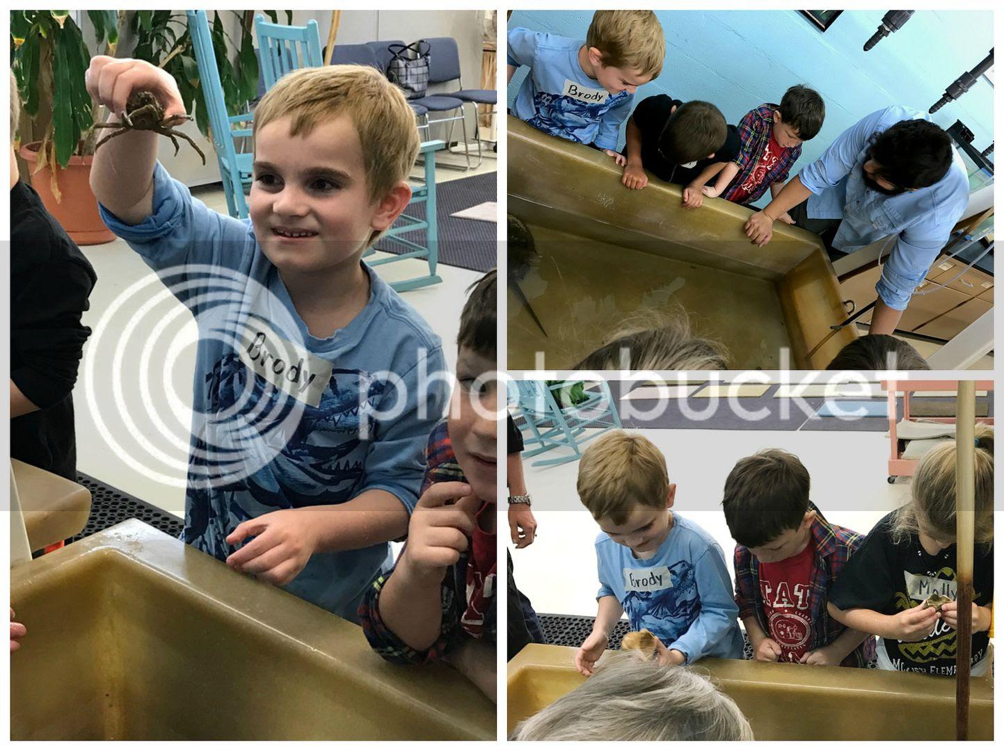 photo kindergarten4_zpsvyxgsvgj.jpg