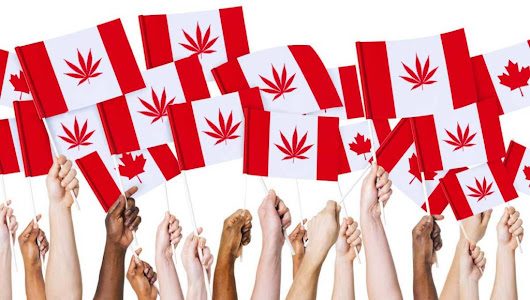 Canada to legalise marijuana to help them cope with living next to America