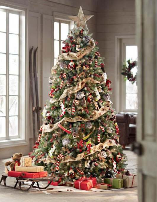 Amazing Photographs Showing Beautiful Christmas Tree Ideas