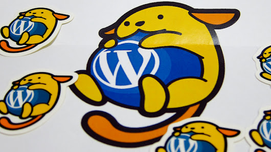 Is WordPress set to take over the web? - The Garage