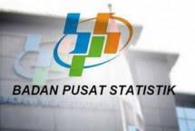 Ilustrasi Badan Pusat Statistik (BPS)