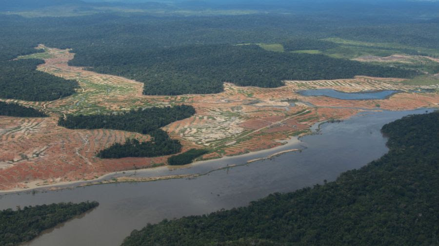 deforestacion brasil amazonia