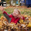 Jumping in Piles of Leaves | Pat Crawford DDS