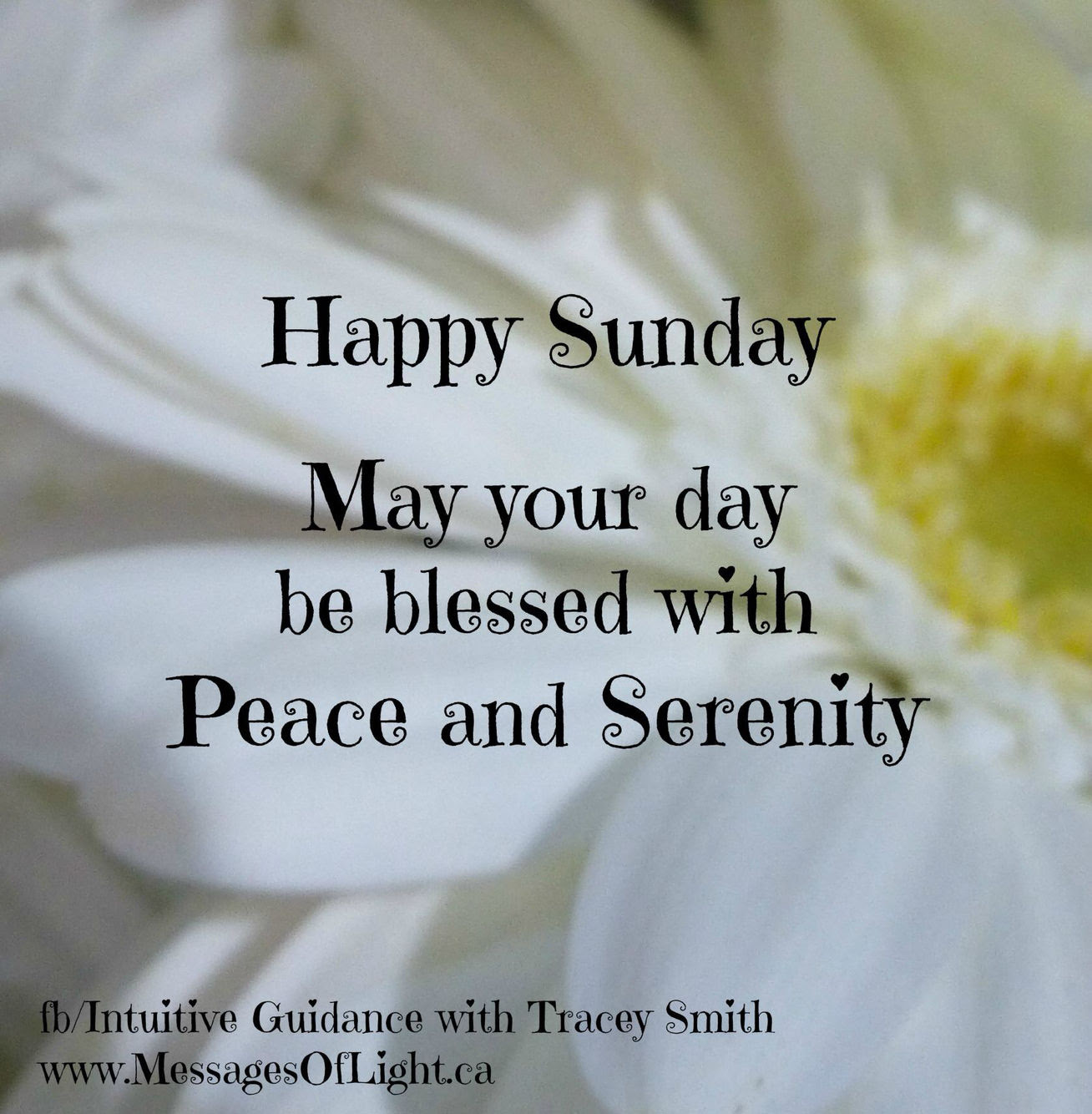 Happy Sunday May Your Day Be Blessed Pictures Photos And Images