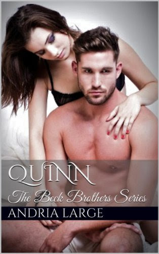 Quinn (The Beck Brothers #3) by Andria Large