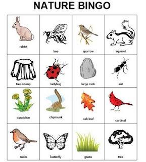 1000+ images about science bingo on Pinterest   Charts, Bingo ...