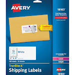 """Avery Shipping Labels, TrueBlock Technology, Permanent Adhesive, 2"""" x 4"""", 100 Labels (18163)"""