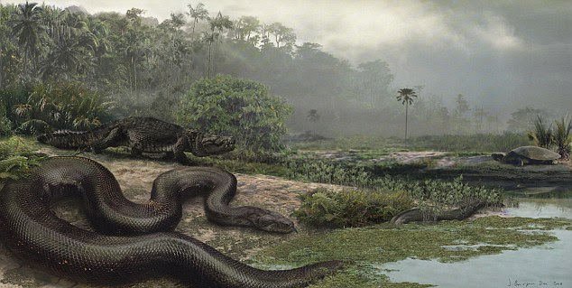 Giant snake remains discovered