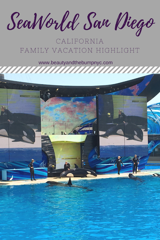 California Family Vacation Highlight: SeaWorld San Diego