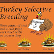 Turkey Selective Breeding