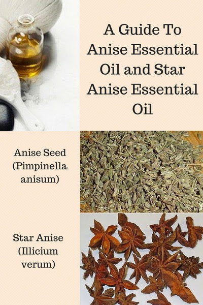 Anise Essential Oil Benefits and Uses In Aromatherapy
