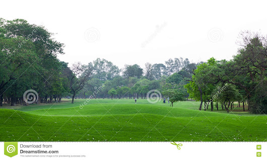 Landscape of golf ground