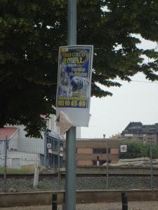 """Uno de los cientos carteles que inundan la ciudad. """"Tigres blancos en libertad"""""""