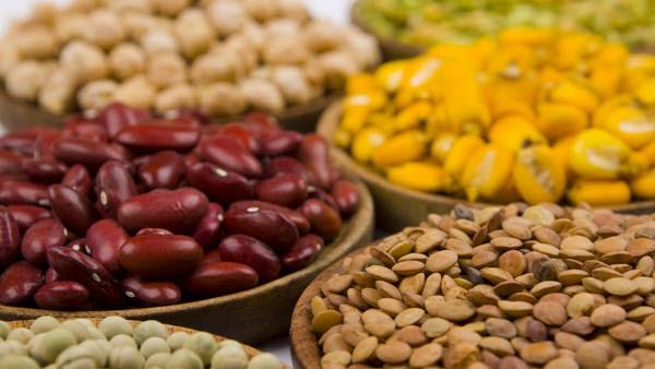 Las legumbres son fuente de proteínas y aminoácidos, cuidan el corazón y son aliadas en el combate de la obesidad y la diabetes.