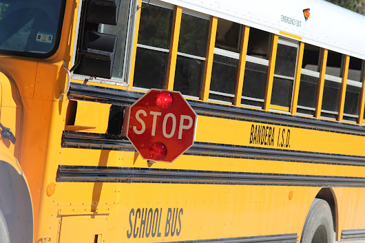 7 Reasons Why School Buses Don't Have Seatbelts